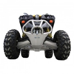 Protection - CanAm - Renegade 800R